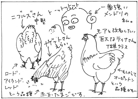 cartoon016_002chooks.jpg