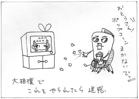 005sumo.jpg