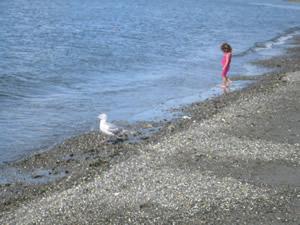 海外の浜辺